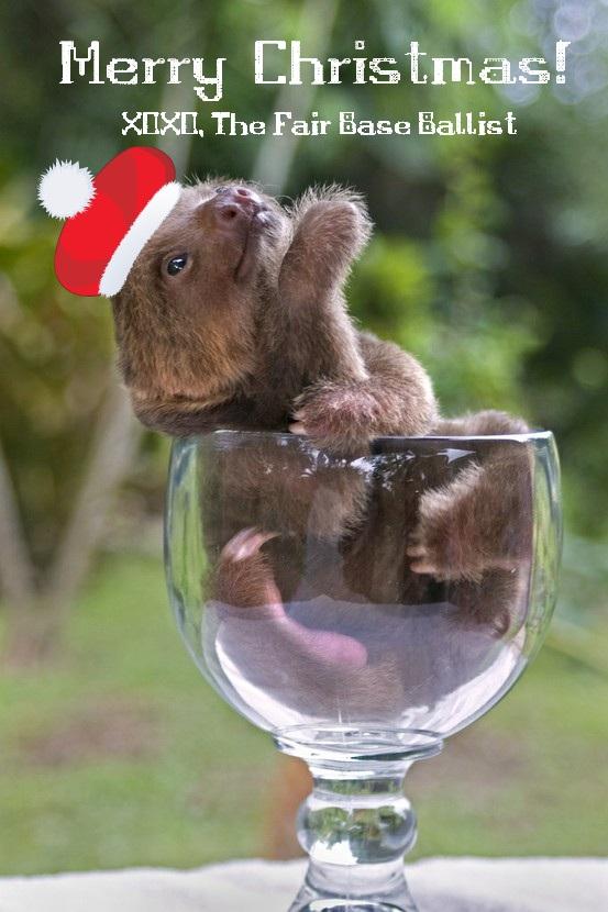 baby sloth christmas | The Fair Base Ballist